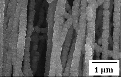 Silicon coated carbon nanotubes